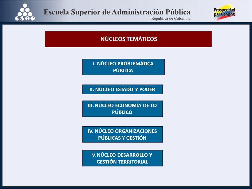 NÚCLEOS TEMÁTICOS I. NÚCLEO PROBLEMÁTICA PÚBLICA