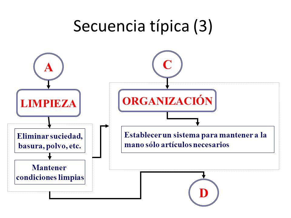 Secuencia típica (3) C A D ORGANIZACIÓN LIMPIEZA