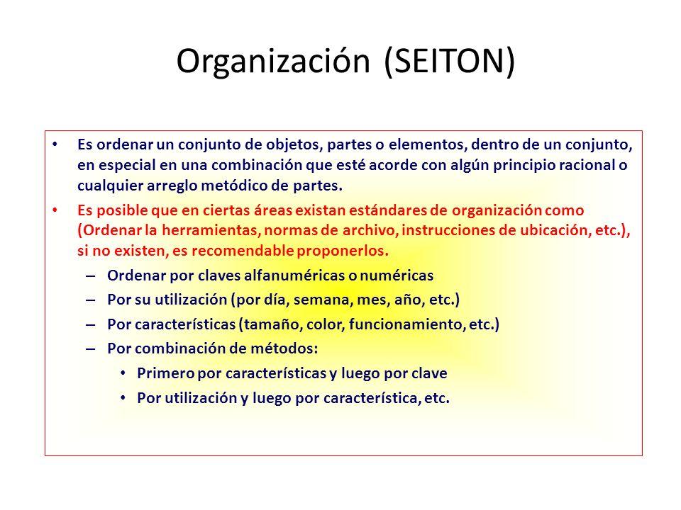 Organización (SEITON)