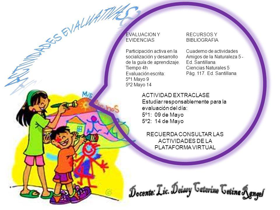 ACTIVIDADES EVALUATIVAS Docente: Lic. Deissy Caterine Cetina Rangel