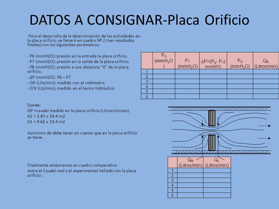 DATOS A CONSIGNAR-Placa Orificio
