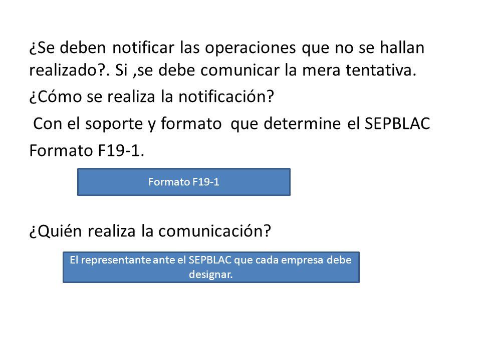El representante ante el SEPBLAC que cada empresa debe designar.