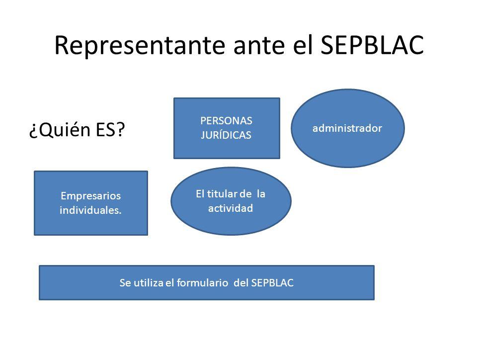 Representante ante el SEPBLAC