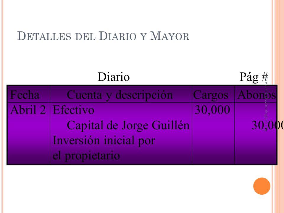Detalles del Diario y Mayor