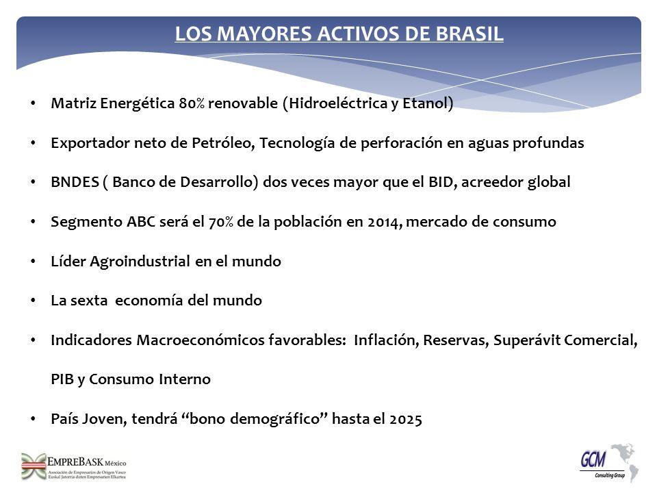LOS MAYORES ACTIVOS DE BRASIL