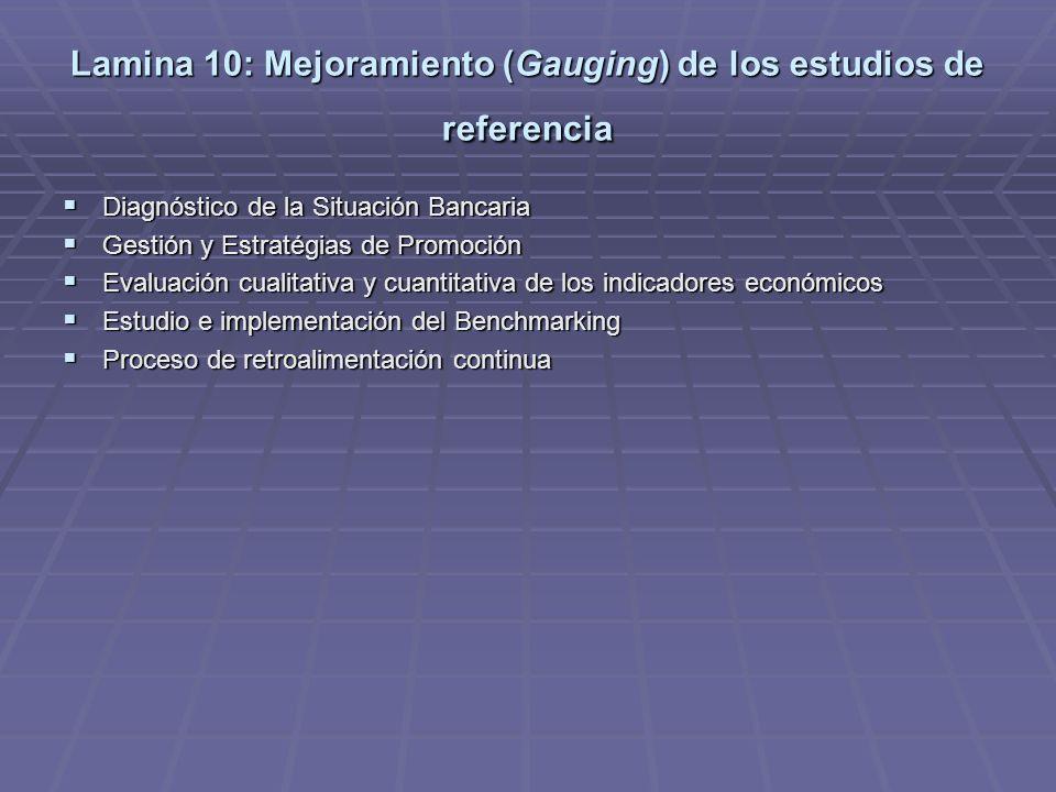 Lamina 10: Mejoramiento (Gauging) de los estudios de referencia