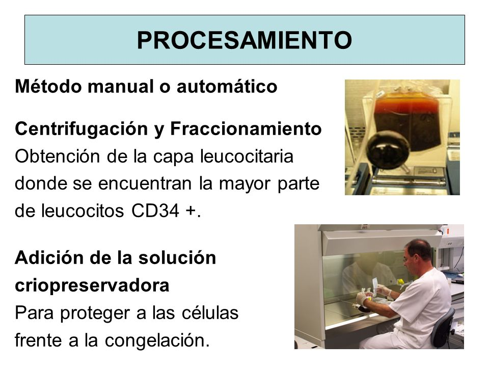 PROCESAMIENTO Método manual o automático