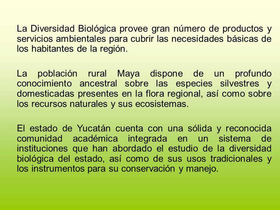 La Diversidad Biológica provee gran número de productos y servicios ambientales para cubrir las necesidades básicas de los habitantes de la región.