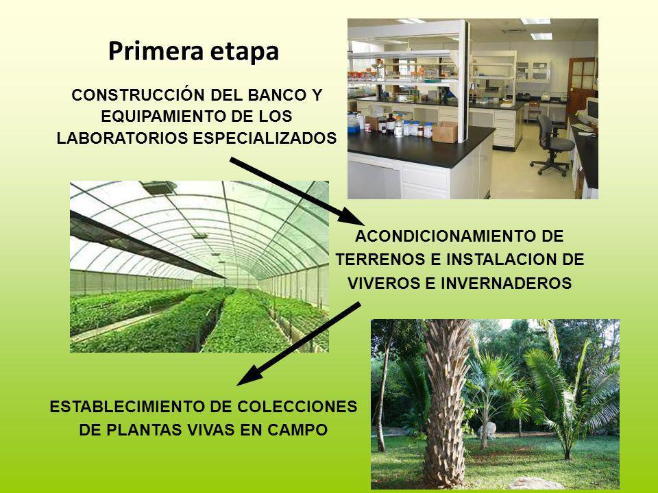 Primera etapa CONSTRUCCIÓN DEL BANCO Y EQUIPAMIENTO DE LOS LABORATORIOS ESPECIALIZADOS.