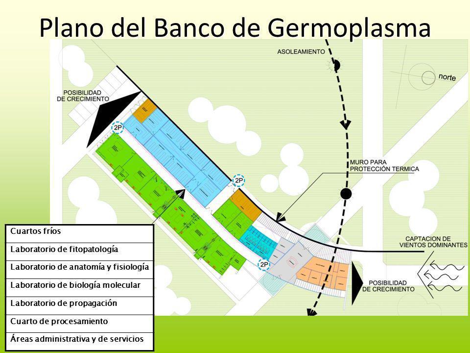 Plano del Banco de Germoplasma