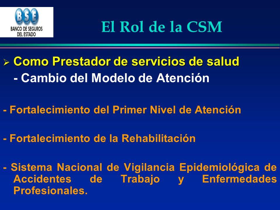El Rol de la CSM Como Prestador de servicios de salud