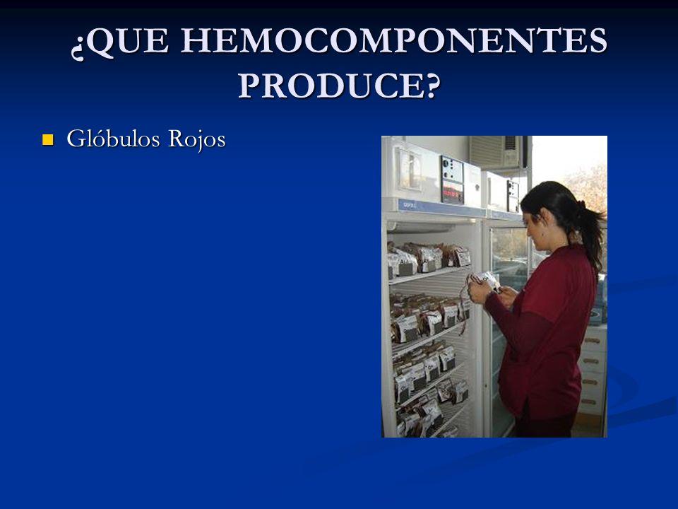 ¿QUE HEMOCOMPONENTES PRODUCE