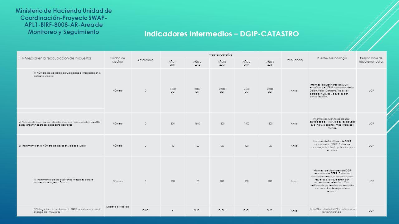 Indicadores Intermedios – DGIP-CATASTRO