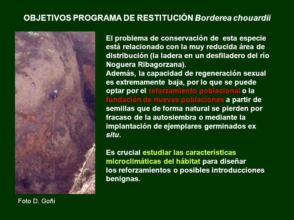 OBJETIVOS PROGRAMA DE RESTITUCIÓN Borderea chouardii
