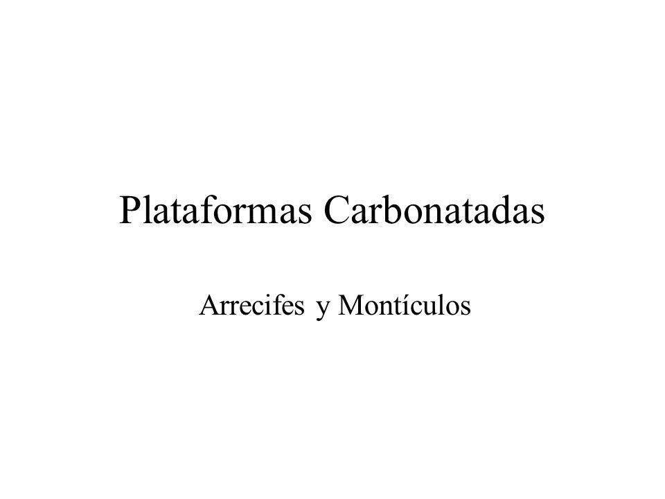 Plataformas Carbonatadas