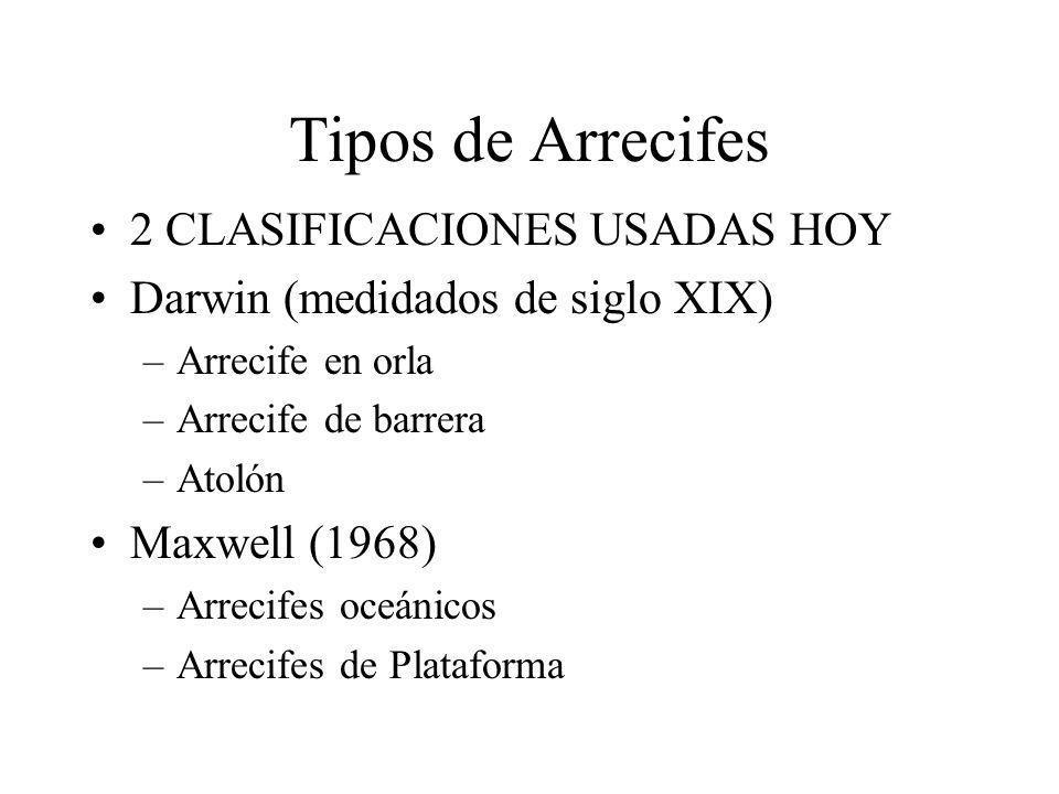 Tipos de Arrecifes 2 CLASIFICACIONES USADAS HOY