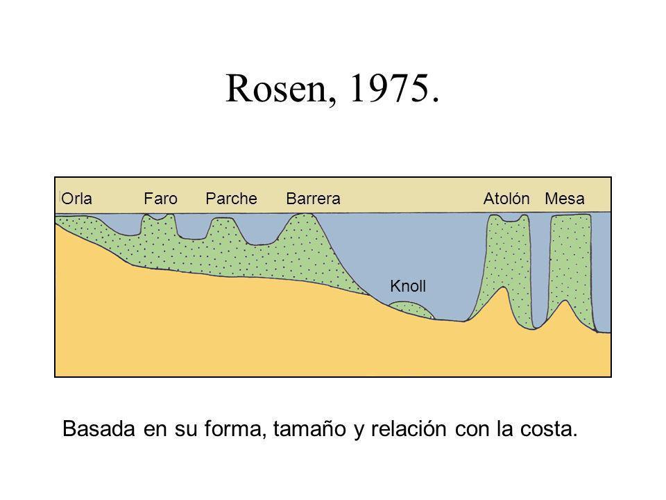 Rosen, 1975. Basada en su forma, tamaño y relación con la costa.