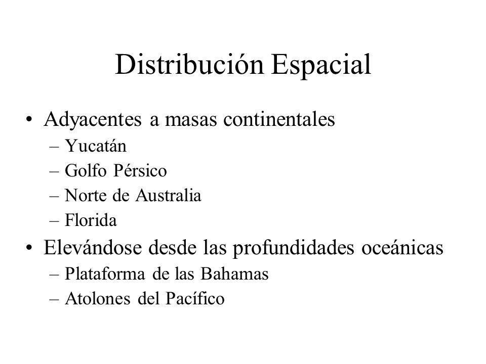 Distribución Espacial