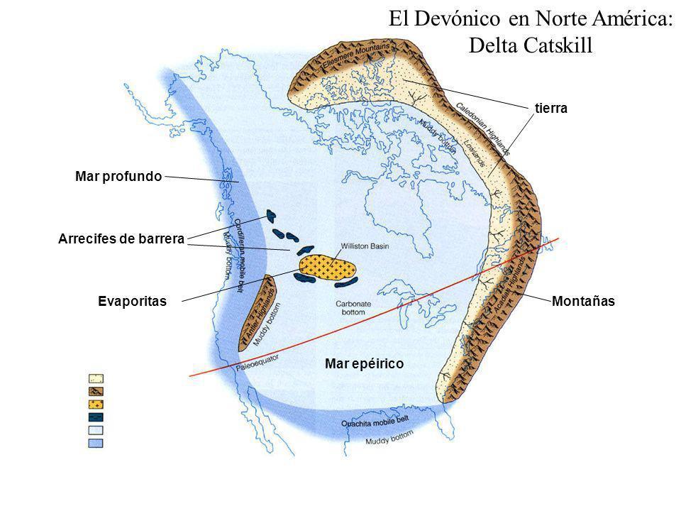 El Devónico en Norte América: