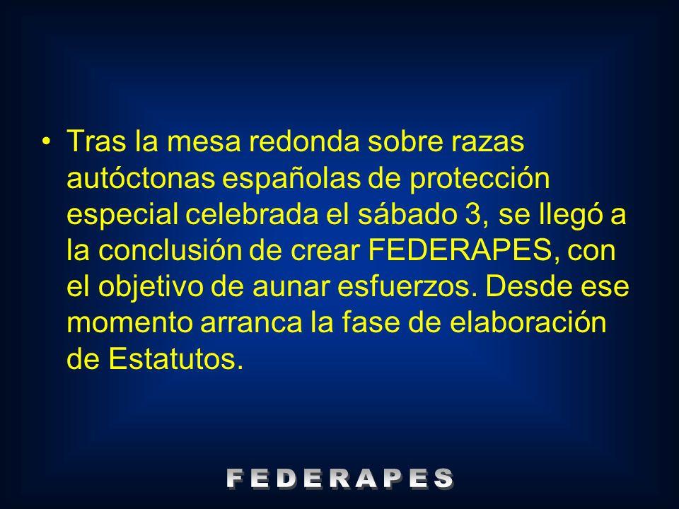 Tras la mesa redonda sobre razas autóctonas españolas de protección especial celebrada el sábado 3, se llegó a la conclusión de crear FEDERAPES, con el objetivo de aunar esfuerzos. Desde ese momento arranca la fase de elaboración de Estatutos.