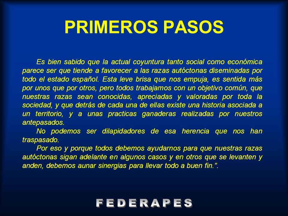PRIMEROS PASOS FEDERAPES