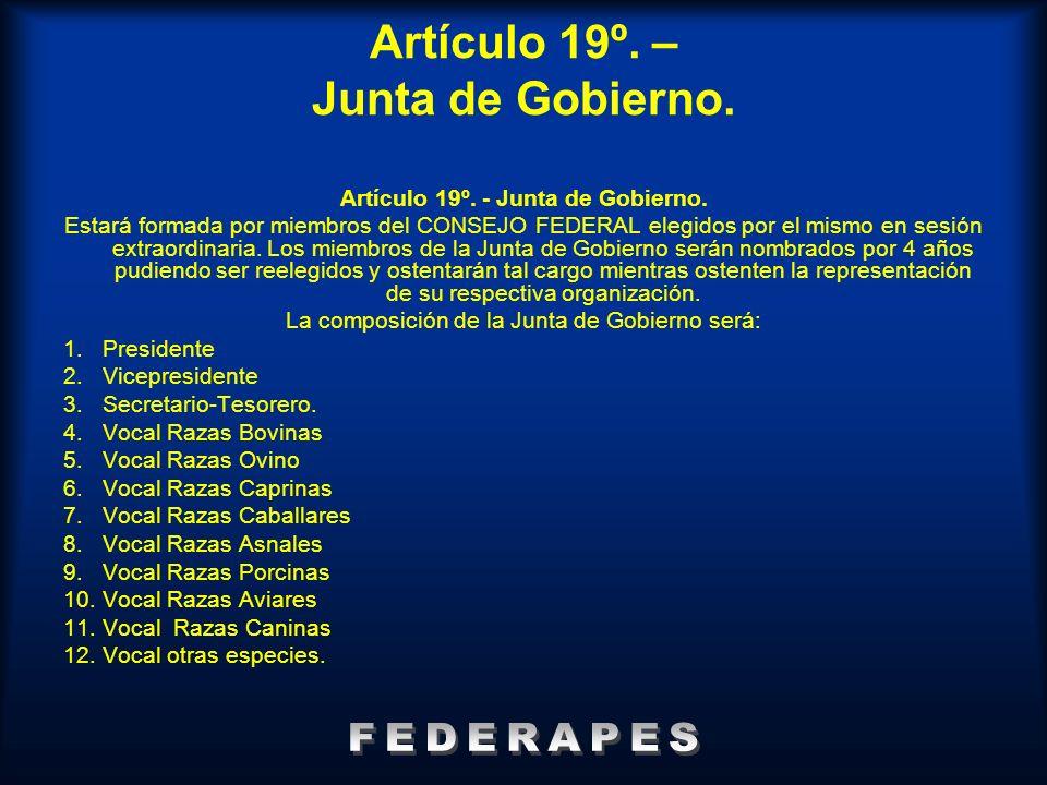 Artículo 19º. – Junta de Gobierno.