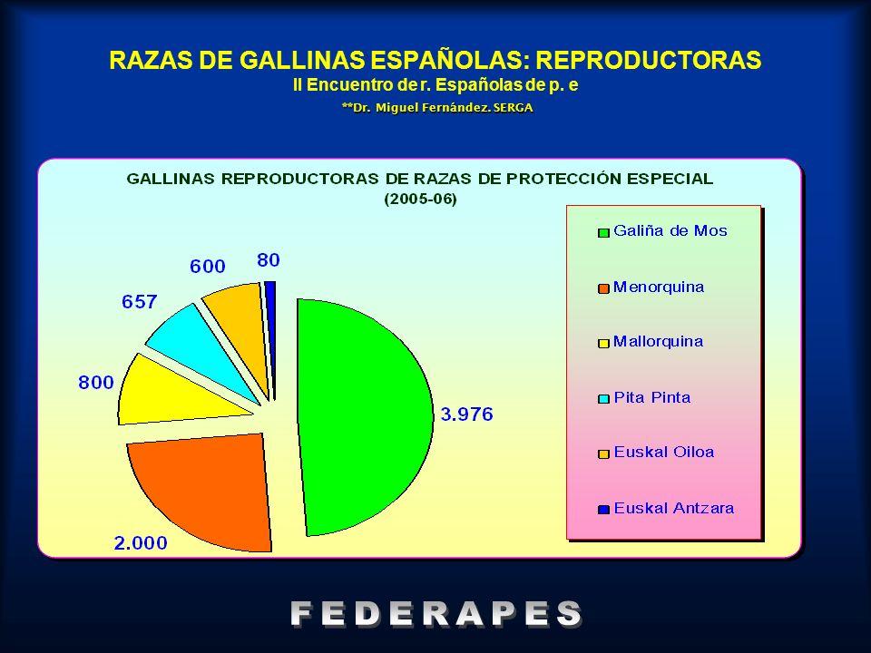 RAZAS DE GALLINAS ESPAÑOLAS: REPRODUCTORAS II Encuentro de r