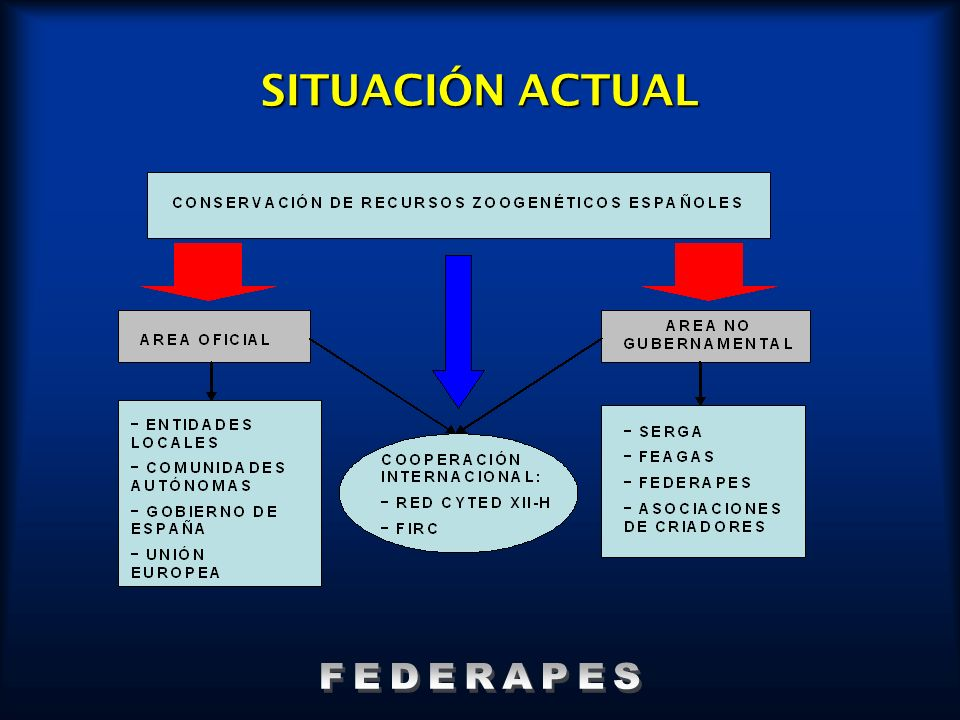 SITUACIÓN ACTUAL FEDERAPES