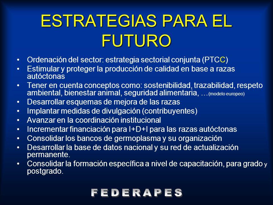 ESTRATEGIAS PARA EL FUTURO