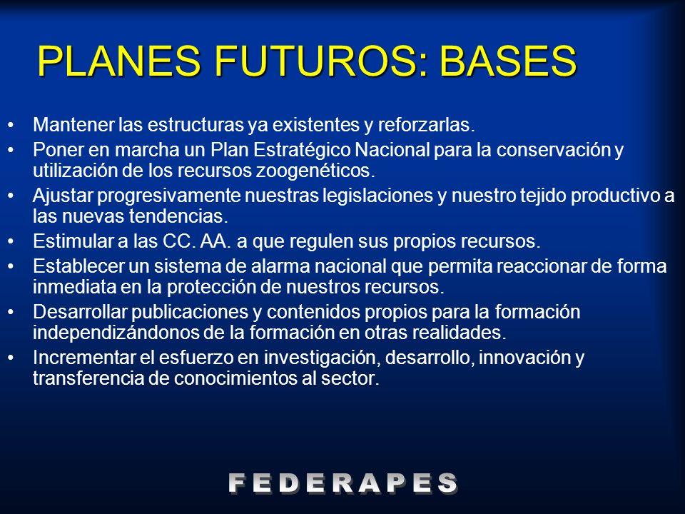 PLANES FUTUROS: BASES FEDERAPES