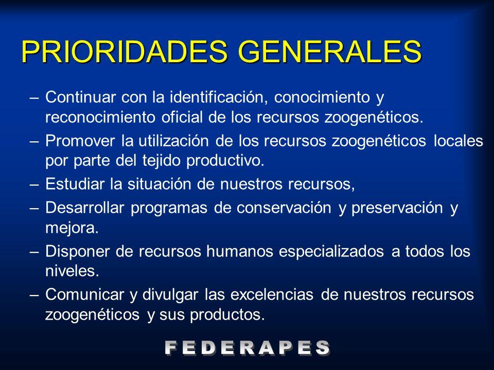 PRIORIDADES GENERALES