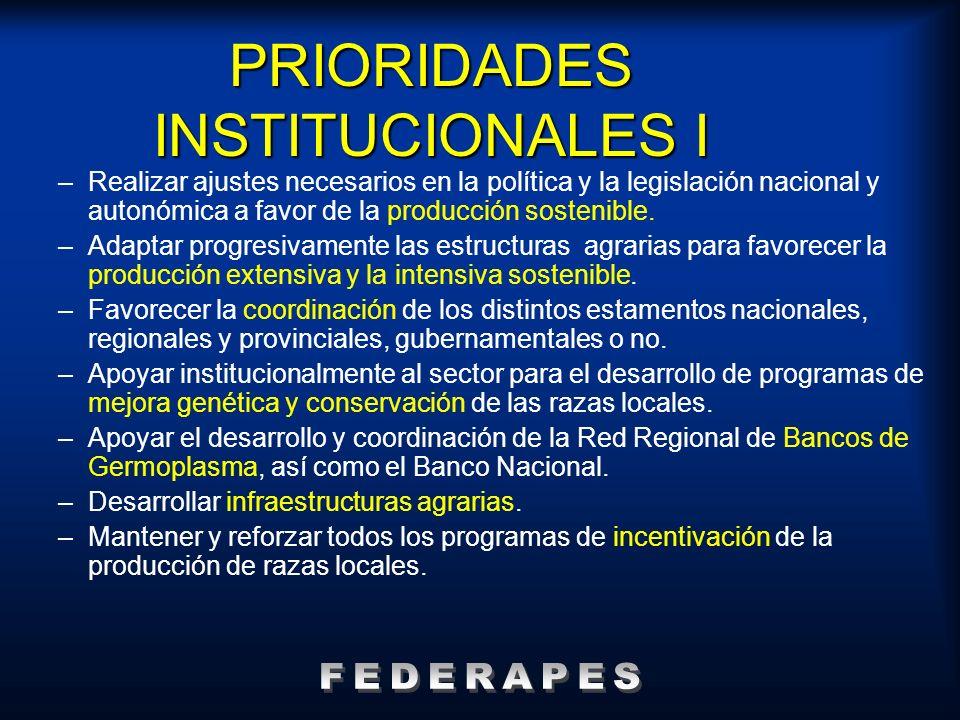PRIORIDADES INSTITUCIONALES I