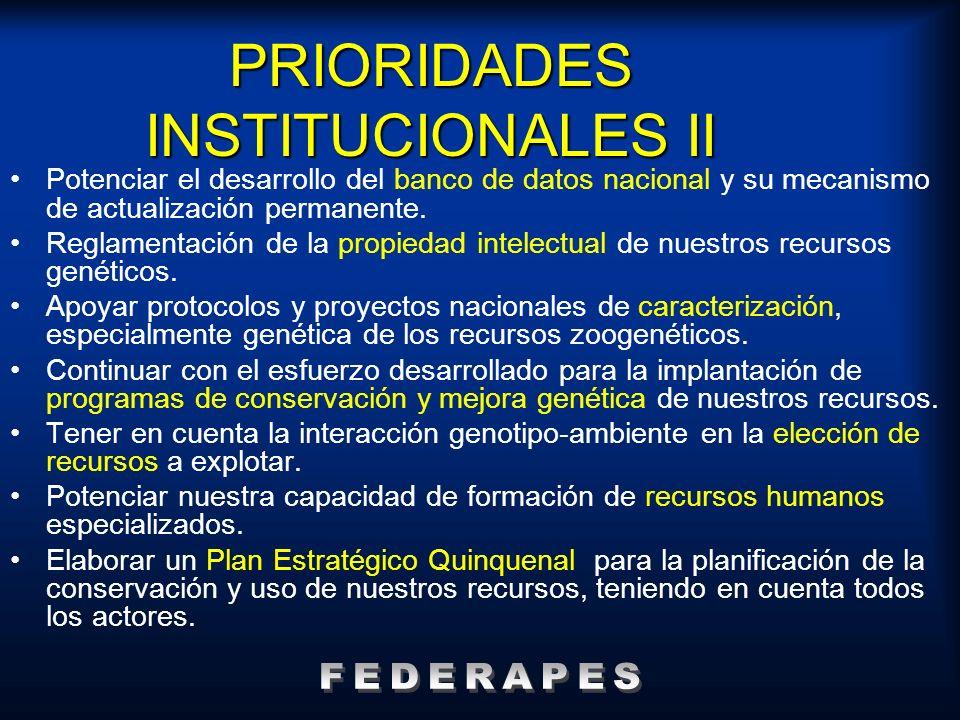 PRIORIDADES INSTITUCIONALES II