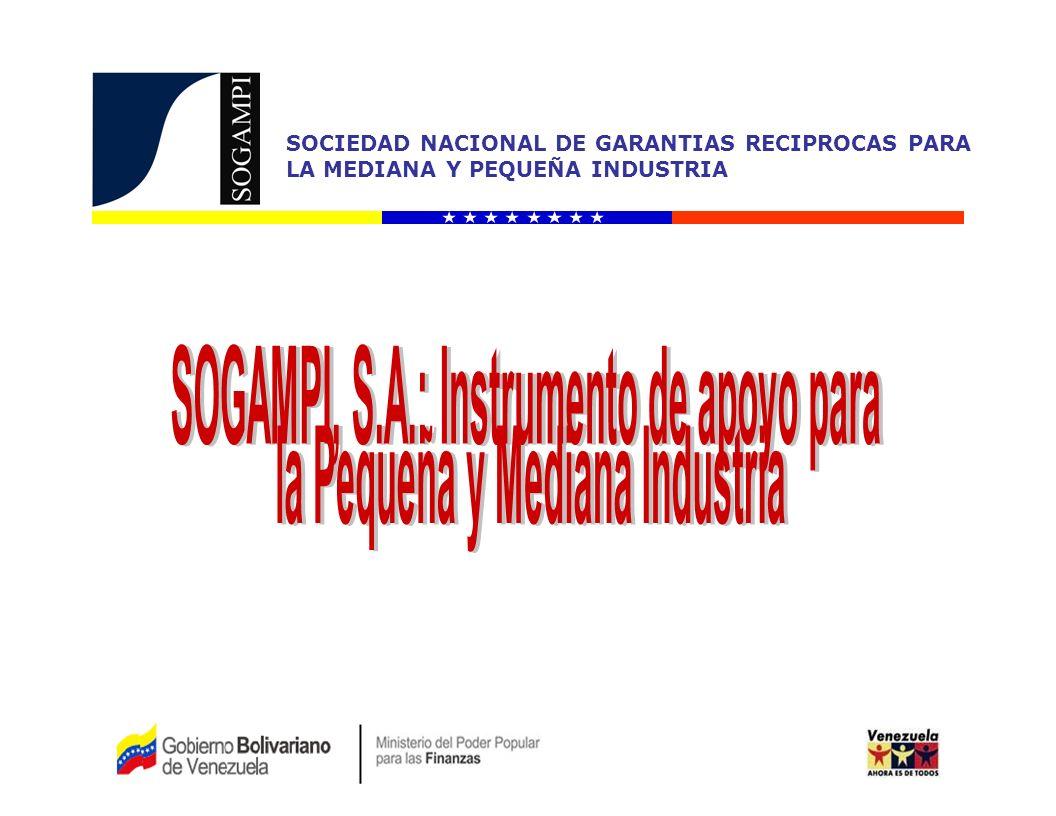 SOGAMPI, S.A.: Instrumento de apoyo para