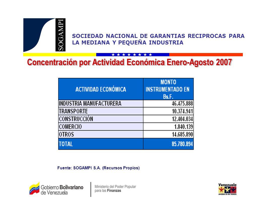 Concentración por Actividad Económica Enero-Agosto 2007