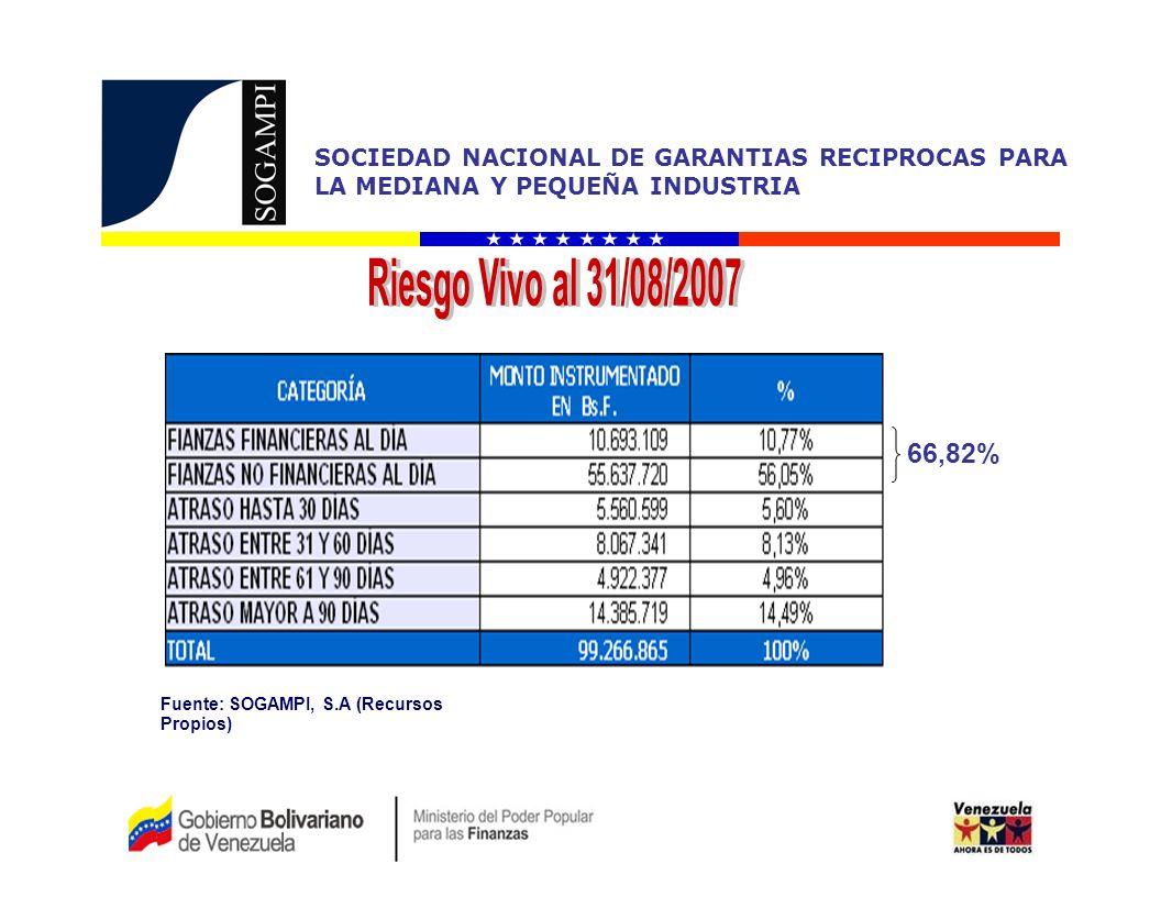 Riesgo Vivo al 31/08/2007 66,82% Fuente: SOGAMPI, S.A (Recursos Propios)