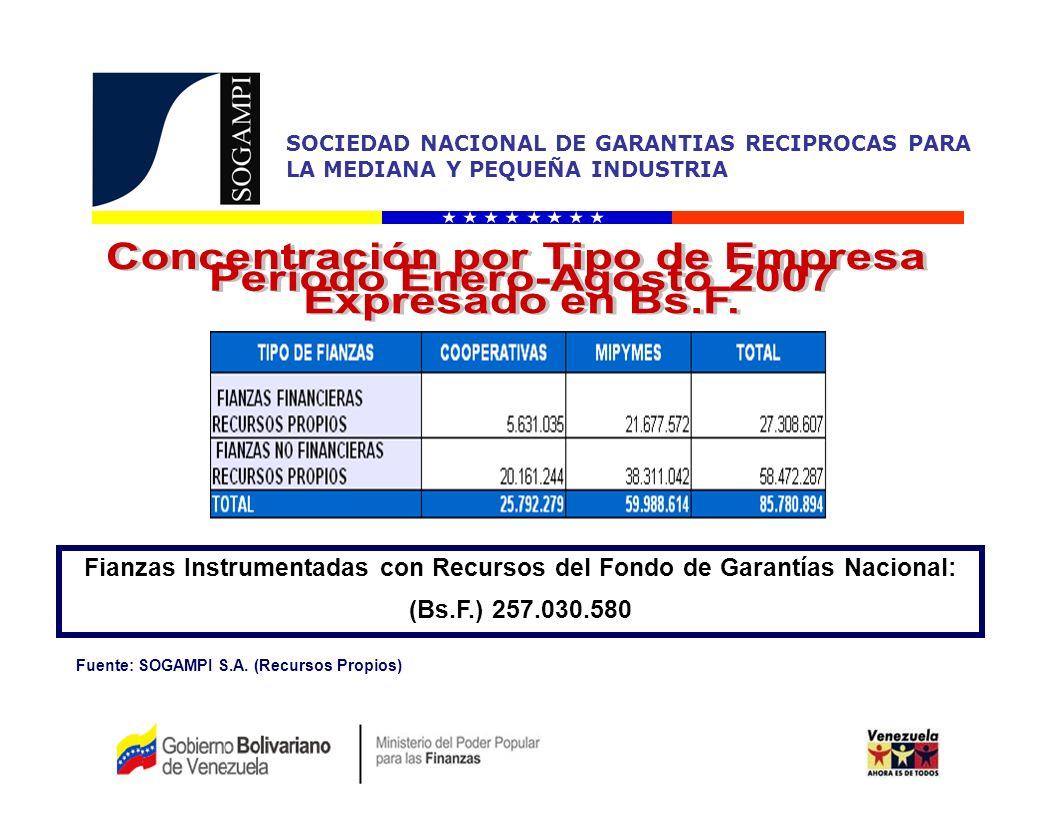 Concentración por Tipo de Empresa Período Enero-Agosto 2007