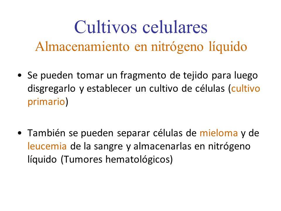 Cultivos celulares Almacenamiento en nitrógeno líquido