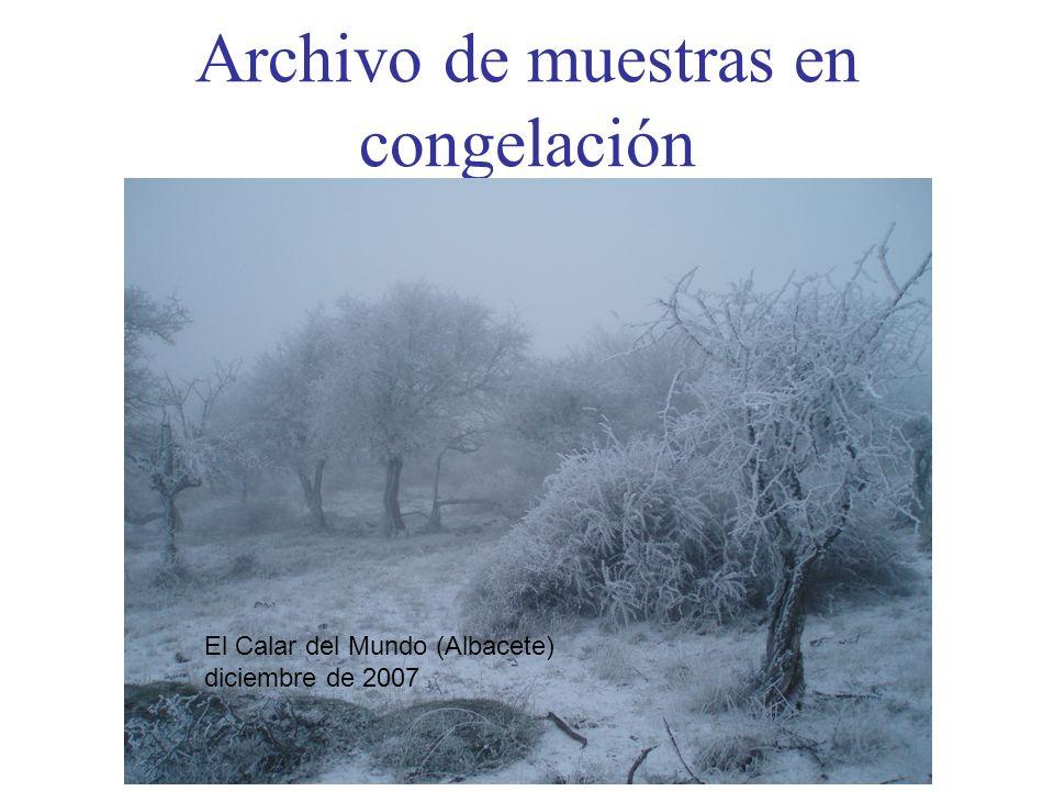 Archivo de muestras en congelación