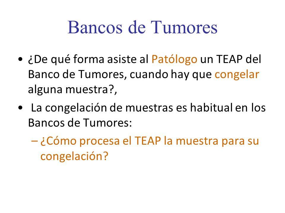 Bancos de Tumores ¿De qué forma asiste al Patólogo un TEAP del Banco de Tumores, cuando hay que congelar alguna muestra ,