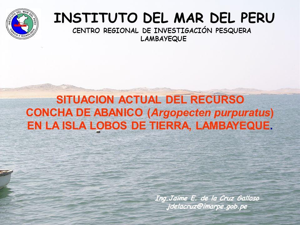 CENTRO REGIONAL DE INVESTIGACIÓN PESQUERA INSTITUTO DEL MAR DEL PERU