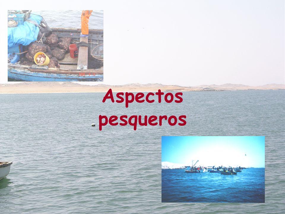 Aspectos pesqueros
