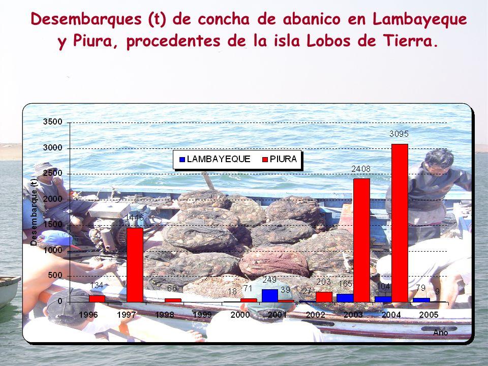 Desembarques (t) de concha de abanico en Lambayeque y Piura, procedentes de la isla Lobos de Tierra.