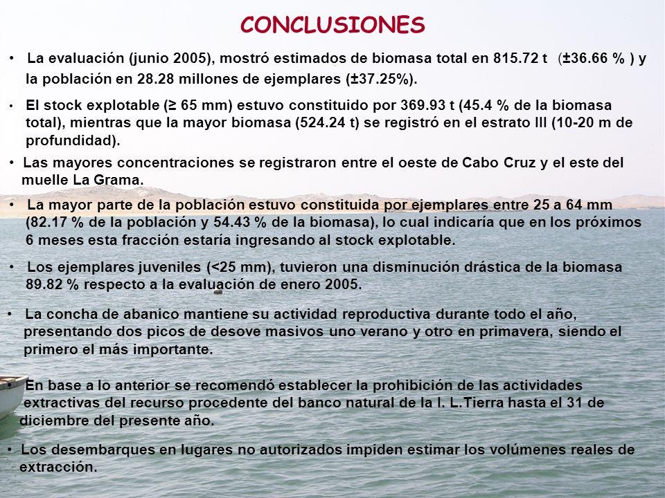 CONCLUSIONES El stock explotable (≥ 65 mm) estuvo constituido por 369.93 t (45.4 % de la biomasa.
