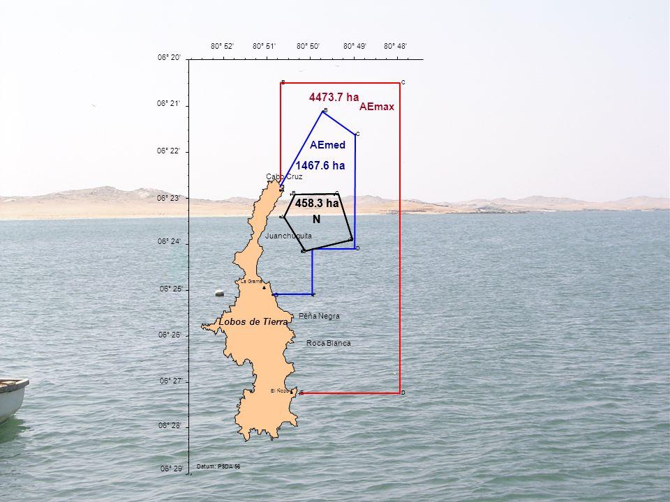 Datum: PSDA 56 Pëña Negra. Roca Blanca. Juanchuquita. Cabo Cruz. La Grama. El Ñopo. Lobos de Tierra.
