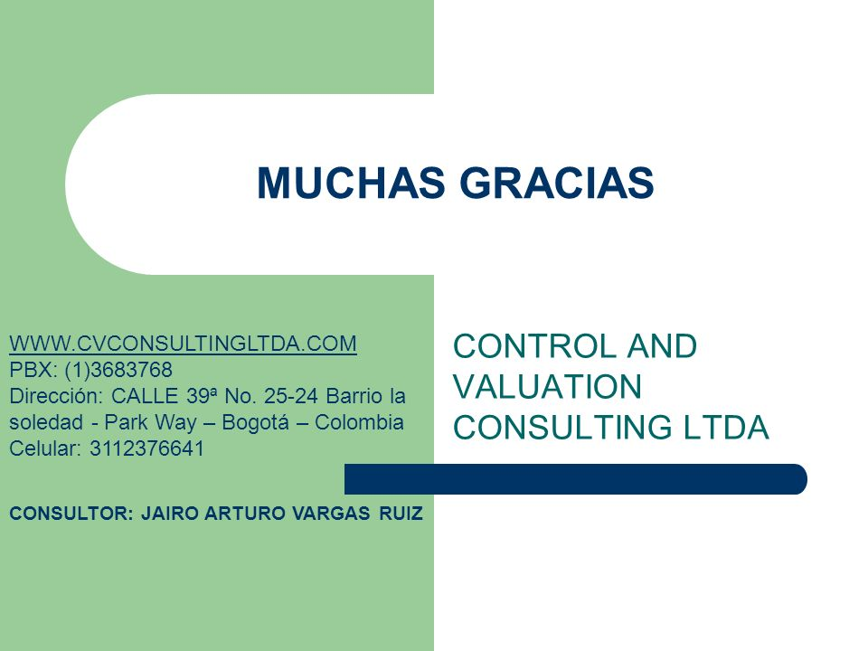 CONTROL AND VALUATION CONSULTING LTDA