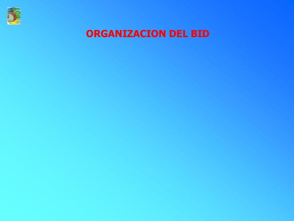 ORGANIZACION DEL BID