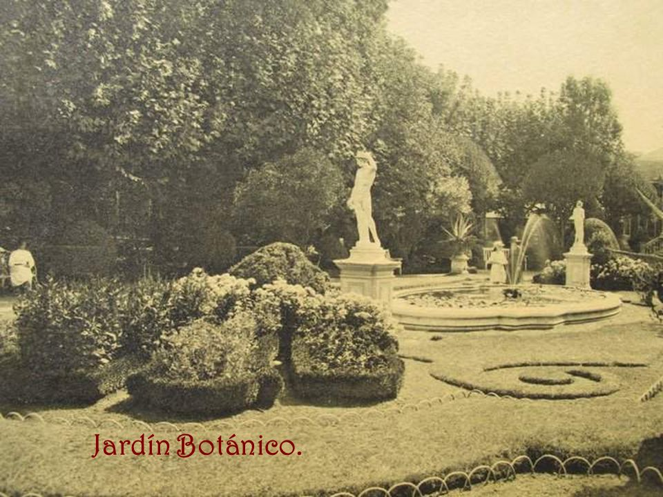 Jardín Botánico.