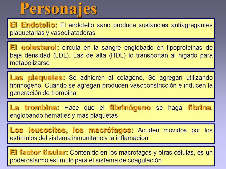 Personajes El Endotelio: El endotelio sano produce sustancias antiagregantes plaquetarias y vasodilatadoras.