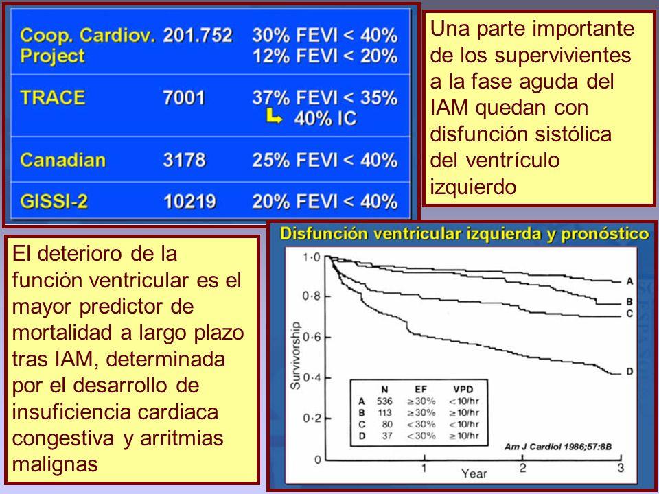 Una parte importante de los supervivientes a la fase aguda del IAM quedan con disfunción sistólica del ventrículo izquierdo